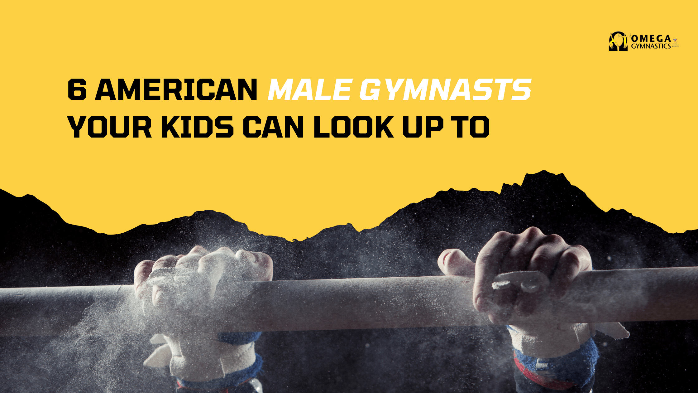 american male gymnasts